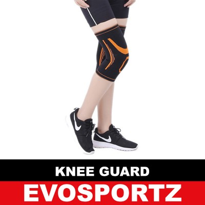 Knee Brace (Single Piece)