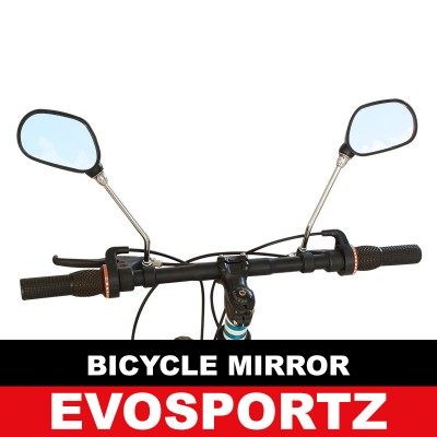 Bicycle Mirror (Extended)
