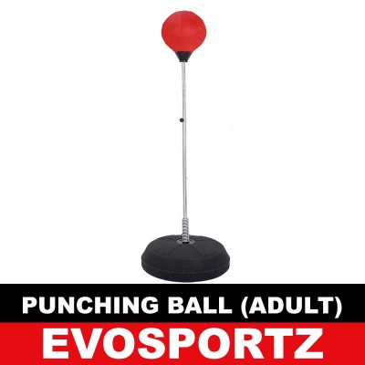Punching Ball (Adult)