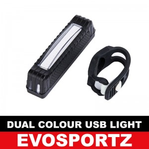 Dual Colour USB Rechargeable Light